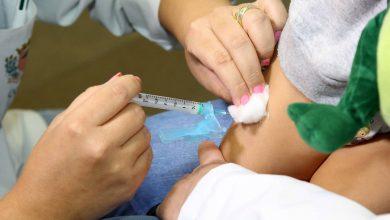 Foto de 1ª etapa da imunização contra a gripe está perto do fim; apenas 38% foram vacinados