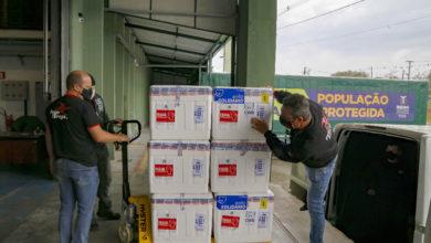 Foto de Parte da nova remessa, 233 mil vacinas contra a Covid-19 chegam ao Paraná