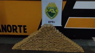 Foto de Polícia Rodoviária Estadual apreende carro com 237 tabletes de maconha na PR 323