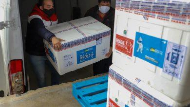 Foto de Imunizantes que chegaram nesta quinta ao Paraná serão usados para completar esquema vacinal